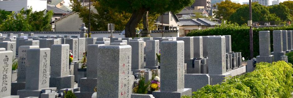 墓地サイズ